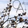 I've Always Loved You (Acoustic Version(October Air))