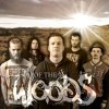 OF THE WOODS - Face the Bullet