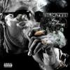 Slim Thug - Boss Of All Bosses - 07 - Thug.flac