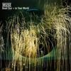 Muse - Dead Star (CureFinale Cover Demo ver.2)