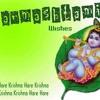 Ghanshyam Teri Bansi Mix Dj Monty