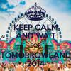 Best Of TomorrowLand Songs