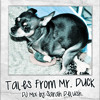 Tales from Mr. Duck - 2010 (Tropical DJ Mix)