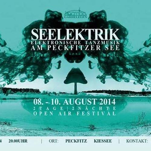 AssL Vs. VintekK Live@Seelektrik Festival 10.08.14 (SetCut)