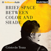Brief Space Between Color and Shade by Cristovão Tezza