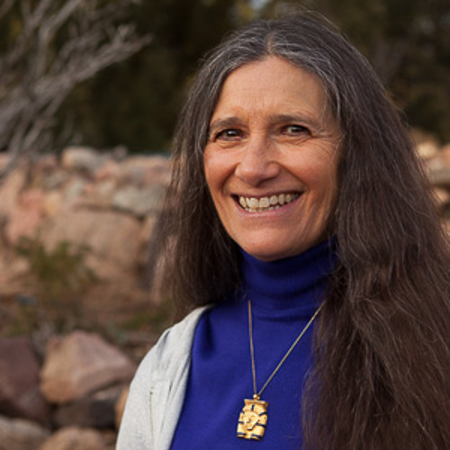 Sandra Ingerman and Hank Wesselman - Shamanic Journeying