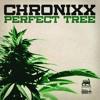 Chronixx - Perfect Tree