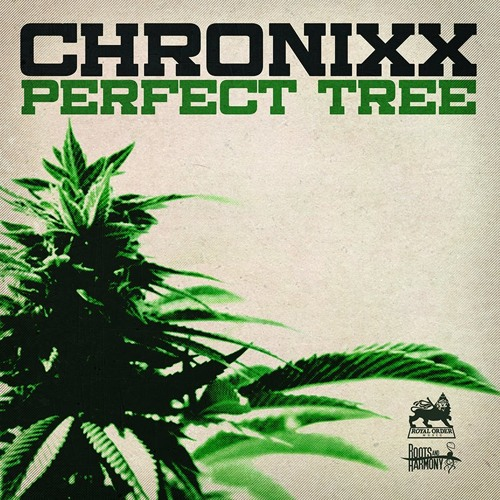 CHRONIXX - PERFECT TREE - ROYAL ORDER MUSIC x ROOTS AND HARMONY