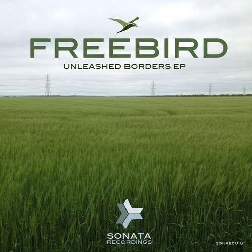 FreeBird - Singularity [Sonata Rec] out now