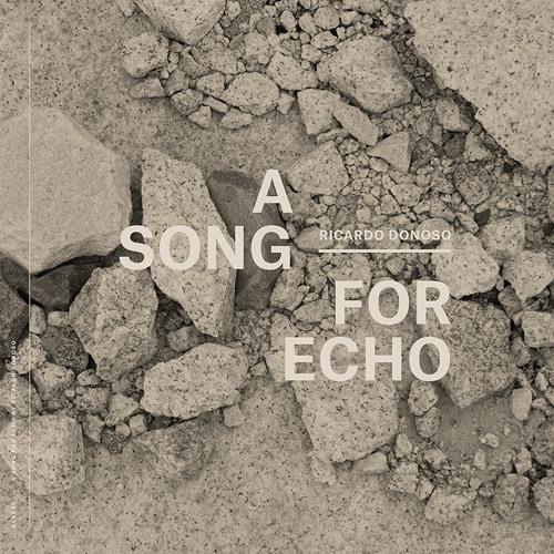 Ricardo Donoso - A Song For Echo - 07 A Song For Echo Part VII