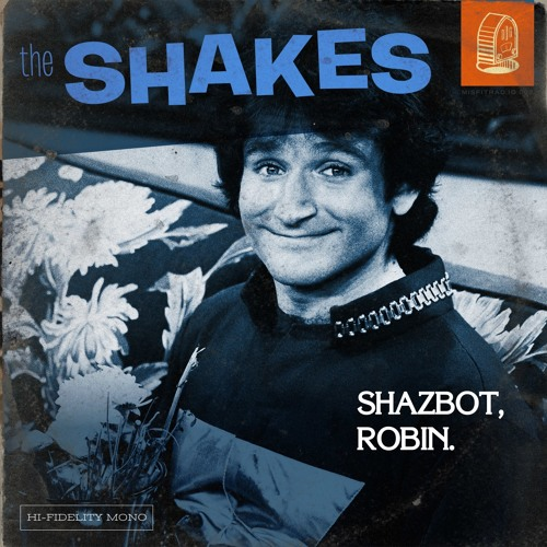 Shazbot, Robin Cover Art
