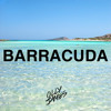 Olly James - Barracuda (Original Mix)