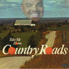Download Country Slams (Quad city DJ's vs. Hermes House Band) Mp3