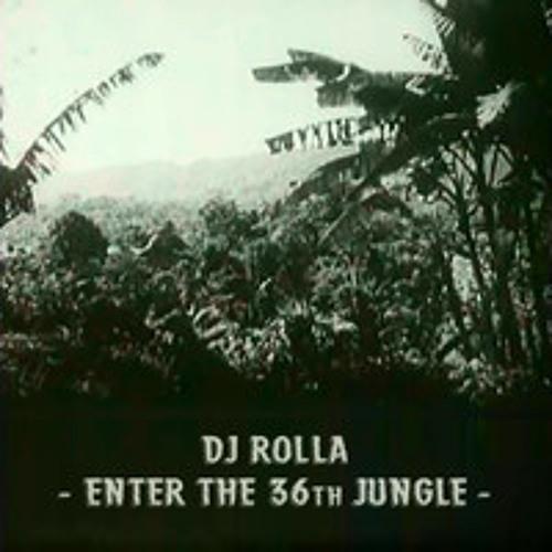 Enter The 36th Jungle - december 2013