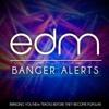 Smash The Bass - EDM Bangers
