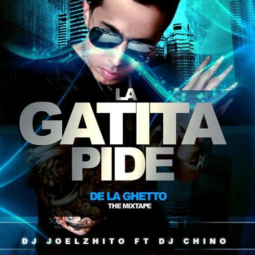 La Gatita Pide (De La Ghetto Ft Dj Joelzhito & Dj Chino) -Los Menores Inc- (1)