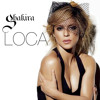 La chanson « Loca » de Shakira, une « copie illégale » selon la justice américaine