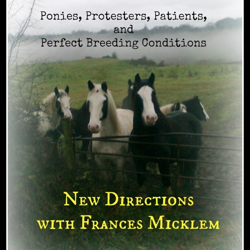 New Directions with Frances Micklem - Protect the Ponies