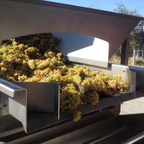 UC Davis winery and crush
