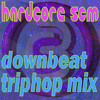 Hardcore Scm Mixed - Trip Hop Downbeat Big Beat