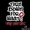 Turn Down For What (Fire Bootleg) **FREE DOWNLOAD