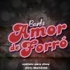 Banda Amor De Forro(nossa Historia