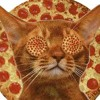 Cats and Pizza Crust