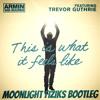 Armin Van Buuren Feat. Trevor Guthrie - This Is What It Feels Like (Moonlight Fiziks Quick Edit)