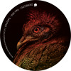 Ken Ishii - Twitched (Original Mix) (Preview) [Different Is Different]