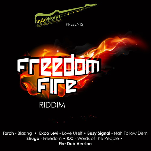 Busy Signal - Nah Follow Dem [Freedom Fire Riddim - IndeWorks 2014]