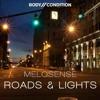 Melosense - Roads & Lights