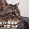 """Calls From My Cat - Episode 15 - """"Alarm Clock"""""""