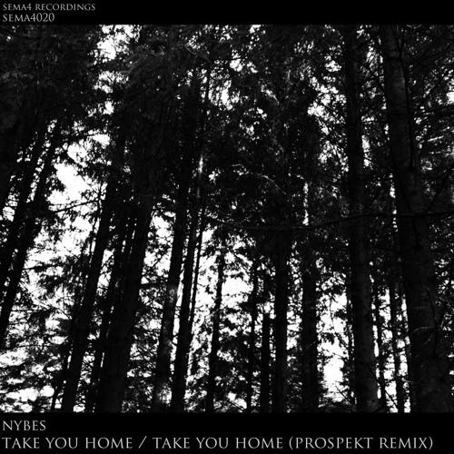 Nybes - Take You Home (Prospekt Remix)