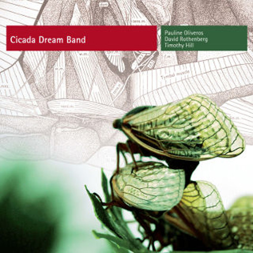 Cicada Dream Band | Pauline Oliveros & David Rothenberg & Timothy Hill