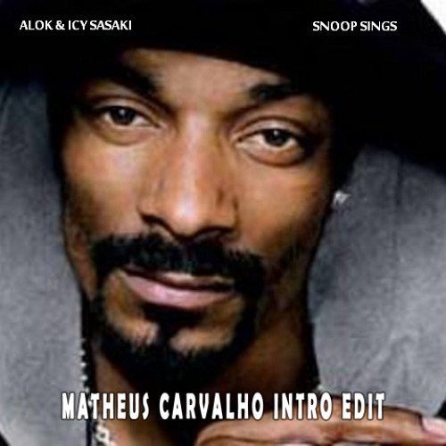 Alok , Icy Sasaki -  Snoop Sings (Matheus Carvalho Intro Edit)