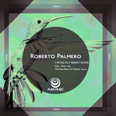 PUR067  Roberto Palmero - Im So Fly Right Now  Incl ( Andy Lee , The RealBirds & Mennie Remixes )