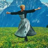 The Sound Of Music (The Hills Are Alive Megamix)