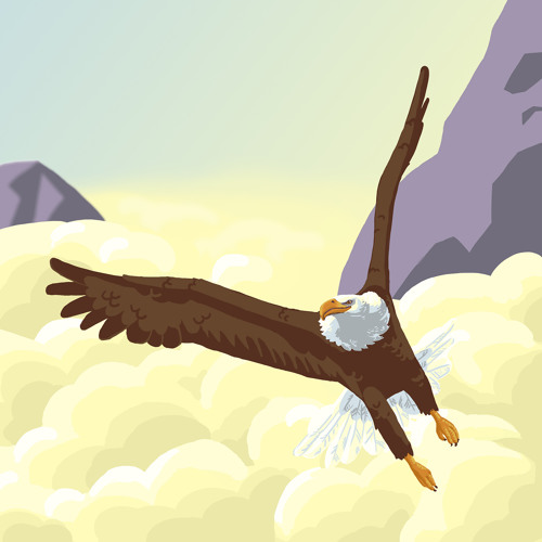 Like an eagle ~ Flying through the mountains