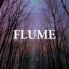 flume-possum-transgressive-records