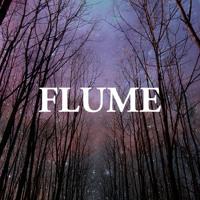 Flume - Possum