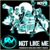 NOT LIKE ME - (produced by King Kirk of Sporty Thieves)