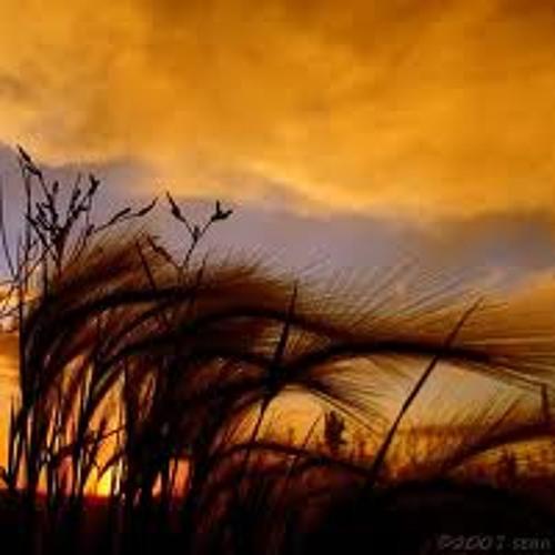 Larada - The Wind (Original Mix) // *Massive Recordings*