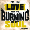I'm In Love And It's Burning In My Soul (Radio Mix) - The Subways