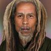 Running Away (Bob Marley cover by Gentlevirus reggae)