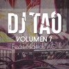 EL BAILE DE PAMELA - DJ TAO 2014