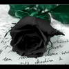 Black Roses (Raw Acoustic)(Originally by Clare Bowen)