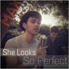 She Looks So Perfect - Max, Kurt Schneider