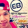 ESPECIAL MEGAMIXES DJ EDUARDO BRAVA 2k14 [VOL.1]( Mixed By DJ Lery Meury ) {