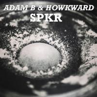 Adam B & Howkward - SPKR (Original Mix)