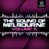 Dambro - Drop (Original Mix) [The Sound of Melbourne V5] OUT NOW!